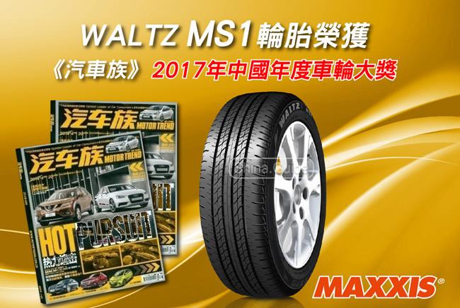 Maxxis Waltz MS1