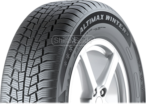 Шины General Altimax Winter 3
